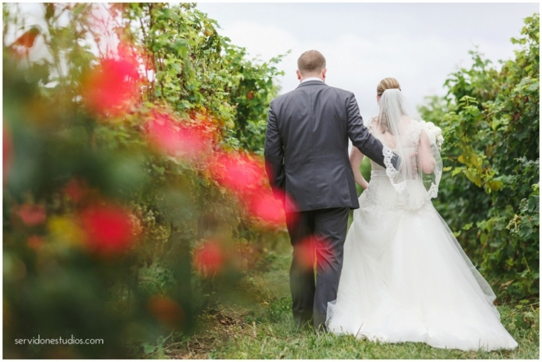Saltwater-Farm-Vineyard-Wedding-Servidone-Studios-WEB_0001-2