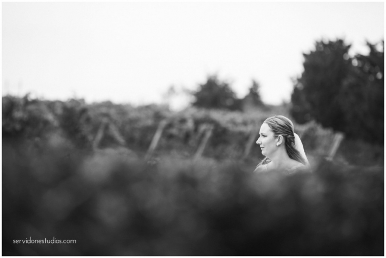 Saltwater-Farm-Vineyard-Wedding-Servidone-Studios-WEB_0018